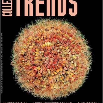 Collezioni Trends Magazine